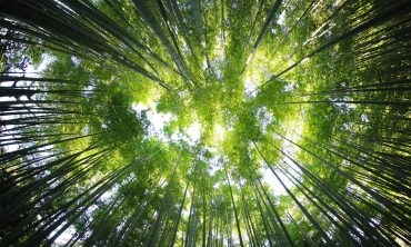 How to grow spiritually?